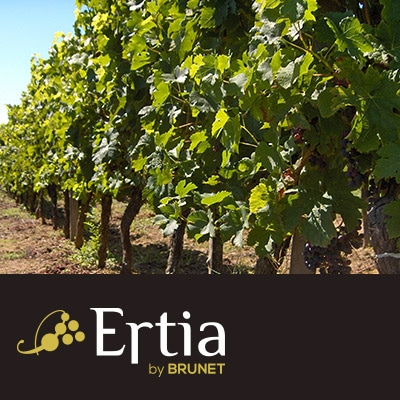 Logo Ertia